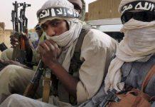 Sahel : fusion de cinq groupes terroristes