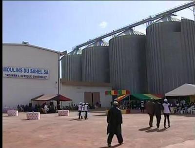 Huilerie alimentaire du Grand Moulin du Mali